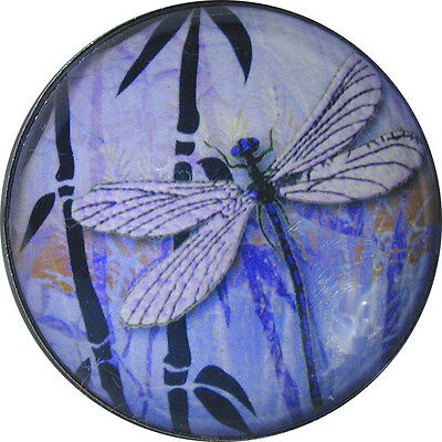 "Crystal Dome Button Dragonfly /& Bamboo w//Moon 1 /& 3//8/"" DFLY 68 FREE US SHIP"