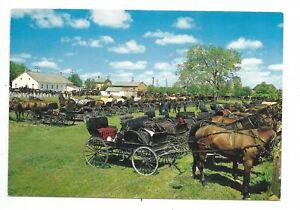 Waterloo-County-034-KITCHENER-ON-034-Mennonite-Meeting-House-horses-buggies