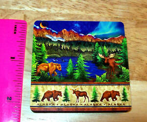 Alaska-Magnet-Northern-Lights-and-Wildlife-3D-New-Ships-Worldwide