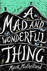 A Mad and Wonderful Thing von Mark Mulholland (2014, Taschenbuch)