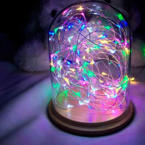 LED Copper Wire lamp Waterproof String Lights Dimmable Remote Control 33ft