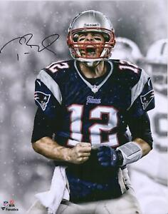 Tom Brady New England Patriots Autographed 16x20 Screaming Photograph - TRISTAR