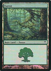 Forest FOIL Champions of Kamigawa HEAVILY PLD Basic Land MTG CARD ABUGames 306