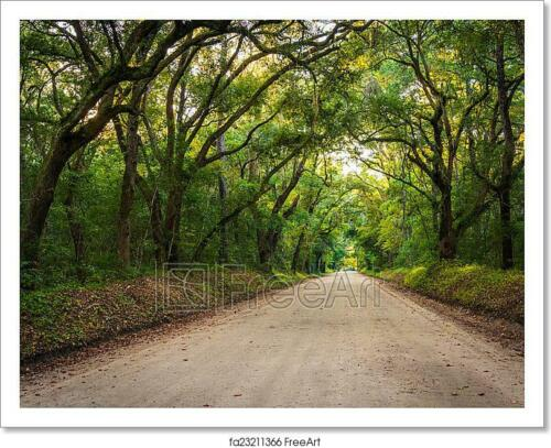 Home Decor Wall Art Poster Oak Trees Along The Dirt Road To Art//Canvas Print