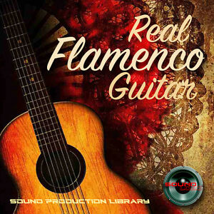 FLAMENCO GUITAR REAL - HUGE Unique 24bit WAVEs Samples/