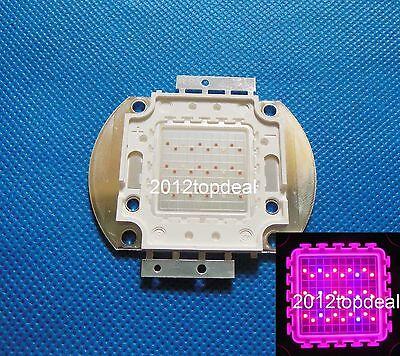 Hybrid 50W Red 660nm Royal Blue 450nm 4:1 High Power LED Bead Plant Growth light