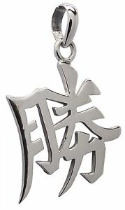 Success chinese feng shui pendant 925 sterling silver 40mm drop image is loading success chinese feng shui pendant 925 sterling silver aloadofball Choice Image