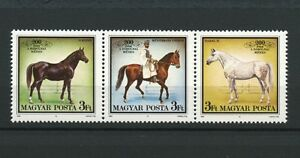 Horses-strip-of-3-mnh-stamps-1989-Hungary-3173