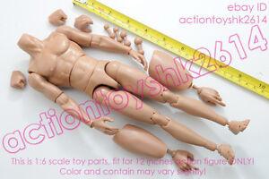 1-6-Scale-Action-Figure-B005-Caucasian-TTM19-Nude-Body-Muscular-body-2-0-ver