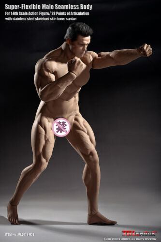 PHICEN TBLeague 1//6 Scale M35 Seamless Advanced Muscular Body