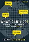 What Can I Do?: Making a Global Difference Right Where You Are by David Livermore (Paperback, 2011)
