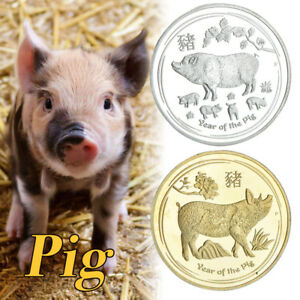 WR-2019-LUNAR-Year-Of-PIG-Silver-Gold-Collection-Coin-New-Year-Gifts-Set