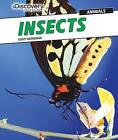 Insects by Lesley McFadzean (Hardback, 2015)