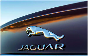INSTANT-JAGUAR-X-TYPE-RADIO-CODE-SERVICE-BEGINNING-WITH-JA-OR-M-ONLY-99p