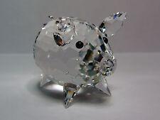 SWAROVSKI Crystal SCS MAIALE MEDIO Medium Pig 7638 050 000