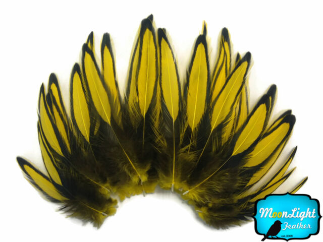 Yellow BLW Whiting Farms Laced Hen Cape Loose Feather Fly Tying Supply 1 Dozen