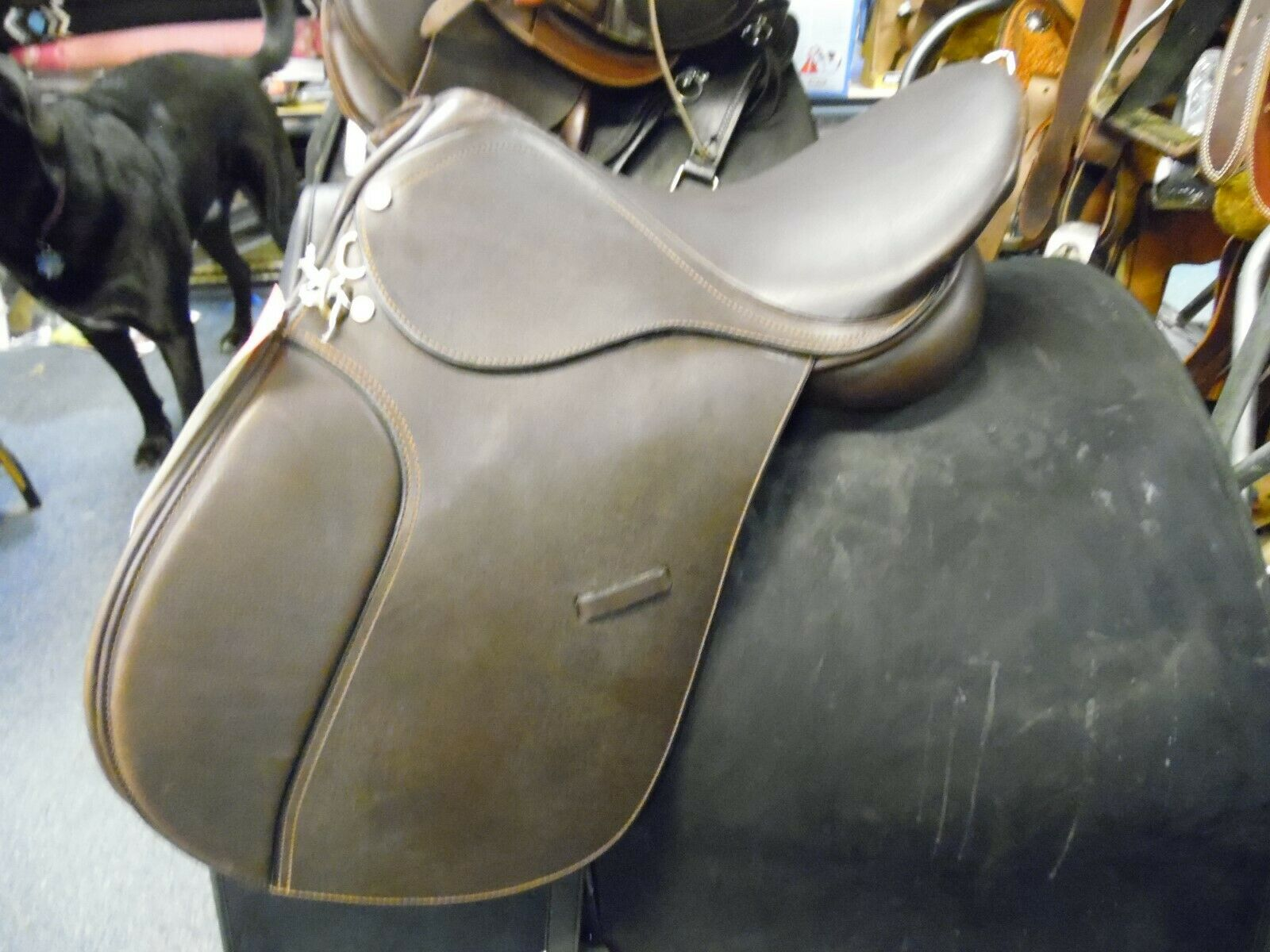 Nice Event All purpose English Saddle 16.5 seat medium tree