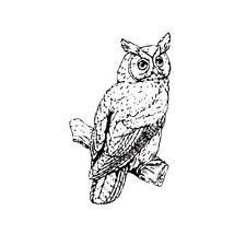 Sweet Grass Stamps #9 bird of prey HAWK Unmounted bird rubber stamp