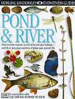 Pond and River by Steve Parker (Hardback, 1988)