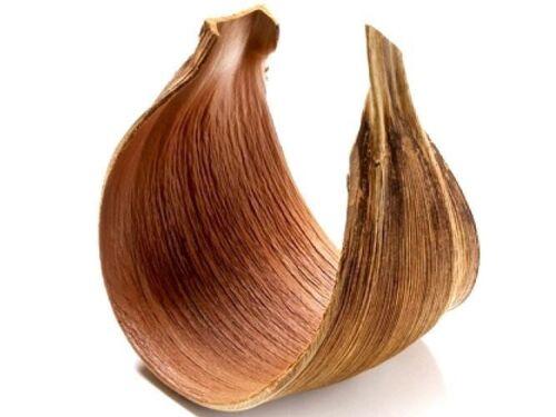 Nadeco ® kokosblatt galera cerradokokosblatt curvadaspalmeras hojaPalm