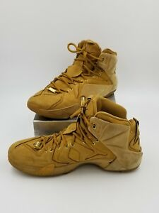 sale retailer dc681 26dd0 Details about Nike LeBron 12 XII EXT QS Wheat Size 11 744287-700 Kyrie Cork  What the BHM Elite