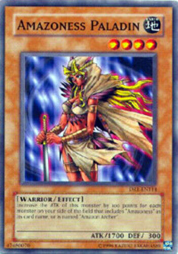 DR1-EN114 Unlimited Edition  YuGiOh Amazoness Paladin 3x EX Common