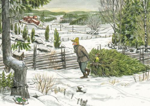 Nordqvist Postkarte Pettersson und Findus holen den Weihnachtsbaum