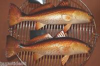 (3)pcs, Realistic Redfish Seafood Restaurant Decor, Saltwater Fish Decor 28