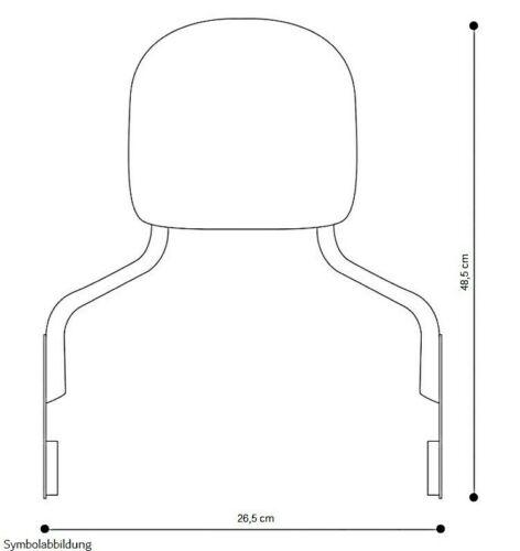 Sissy Bar Gepäckträger abnehmbar für Harley Sportster 1200 CB Custom 13-17 ch
