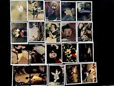 Tarzan Disney Panini Lote 40 Bolsas Cromos