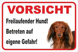 Gewissenhaft Dackel Langhaar Rot Schild Vorsicht 15x20-40x60cm Clear-Cut-Textur Freilaufender Hund