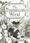 The Evergreen Wood by Linda Parry (Paperback, 1992)