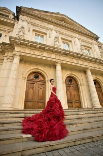 Vera Wang Inspired Burgundy Ball Gown or Wedding R