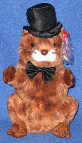 TY PUNXSUTAWNEY PHIL 2004 GROUNDHOG BEANIE BABY - MINT - NON MINT TAG - SEE PICS