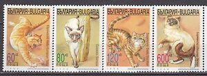 BULGARIA-1998-MNH-SC-4032-4035-The-Cats