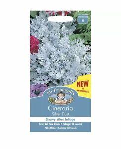 Cineraria-Silver-Dust-Seeds-Pack-Of-200-Mr-Fothergills