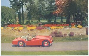 Triumph-TR2-Original-Factory-Issued-colour-Postcard