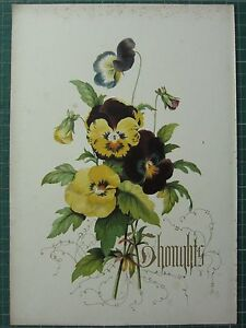 1848 PRINT ~ PANSY - THOUGHTS - FLOWERS AND THEIR KINDRED THOUGHTS