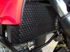 Suzuki DL650  V-STROM Radiator Guard (2004--2011)