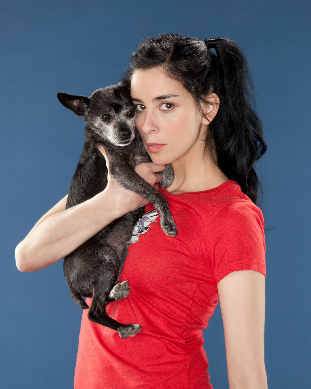 sarah silverman dog essay Instagramcom/sarahkatesilverman it's no laughing matter for comedian sarah silverman that her dog — and best friend of 14 years — passed away this week.