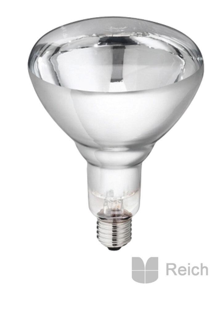 10 VETRO RIGIDO infrarossi Lampada a faretto di calore PHILIPS 150W Trasparente