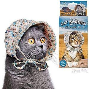 Chat Capot Capot Chapeau Pour Votre Chat Kitty