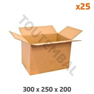 Caisse carton économique en simple cannelure 300 x 250 x 200 mm (par 25)