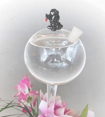 Automatic Vogel Form Glas Bewässerungskugeln Durstkugel Pflanzensitter