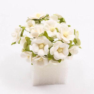 White Poysian Mulberry Paper Flower Craft Handmade Wedding 18mm Scrapbook A1219