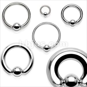 1-PIECE-316L-Surgical-Steel-Captive-Bead-Ring-Ear-Septum-PA-Gauges-Free-USA-Ship