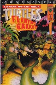 Teenage-Mutant-Ninja-Turtles-Flaming-Carrot-2-Bob-Burden-Jim-Lawson-TMNT-VF