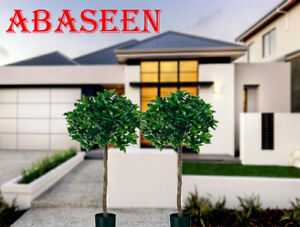 Artificial-4ft-120cm-Bay-Laurel-Topiary-Tree-Pair-Suitable-for-Outdoor-Use
