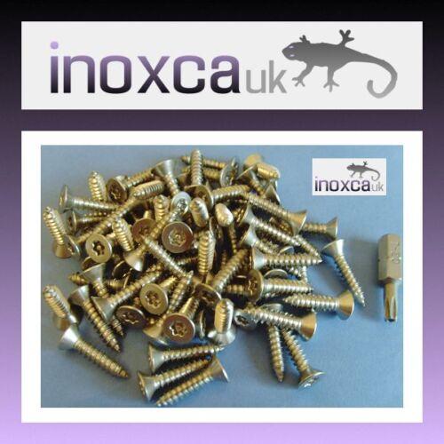 T20 Bit 75 a 4 X 20 mm Acero Inoxidable Tornillo Torx Pin Self Tapping Cabeza Avellanada