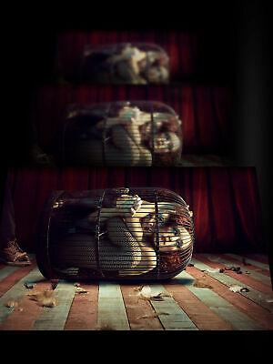 American Horror StoryTV SeriesTV PosterWall ArtHome DecorPrint
